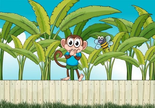 monkey with bee in banana plantation