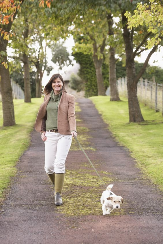 Although this is not an image of Little Stewart and I, it very well could be the way this dog is pulling on his leash!
