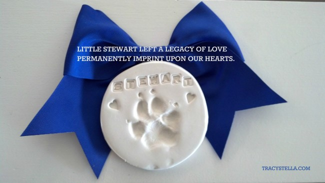 stewart paw print MODIFIED
